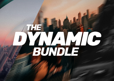 The Dynamic Bundle